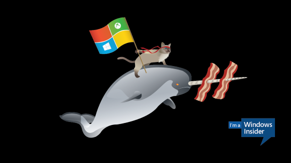 Windows 10 Battlecat Narwhal Wallpaper